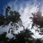 2012-07-26-13.41.13-150x150.jpg