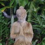buddhaleaves-150x150.jpg